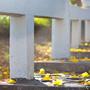 [風景] 春天到來~隨拍澄清湖風景