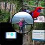 [旅遊] 澳洲蜜月旅行-螢火蟲生態之旅&春之泉國家公園&餵食野生彩虹鸚鵡