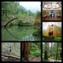 [旅遊] 南投-溪頭森林遊樂區