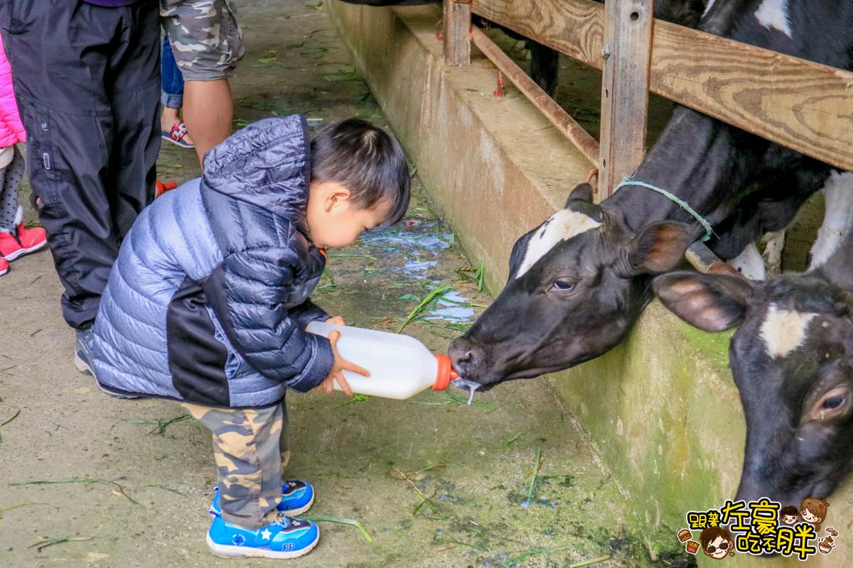 [彰化旅遊] 溜小孩免門票-大山牧場~看小牛好去處、餵牛奶好療癒