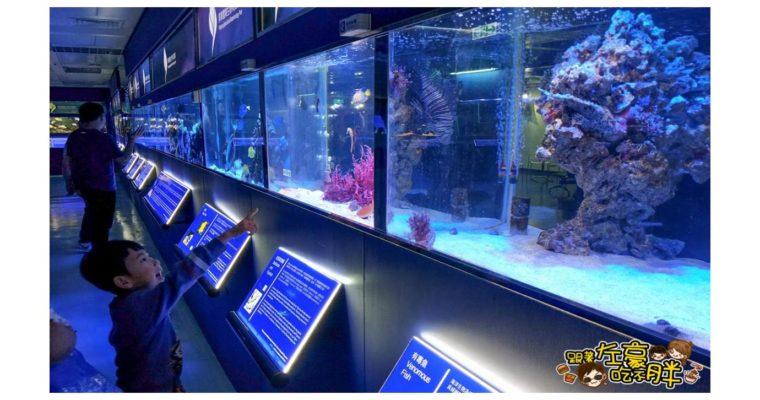 屏東旅遊 屏東農科園區觀賞水族動物展示中心 !