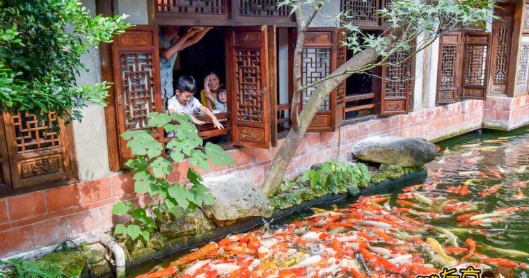 嘉義美食 竹居茶樓 中國庭園景觀餐廳~可餵魚親子聚餐餐廳推薦